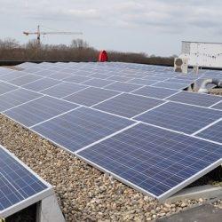 Zuid-Holland lanceert subsidieregeling voor zonnepanelen op onrendabele grote daken